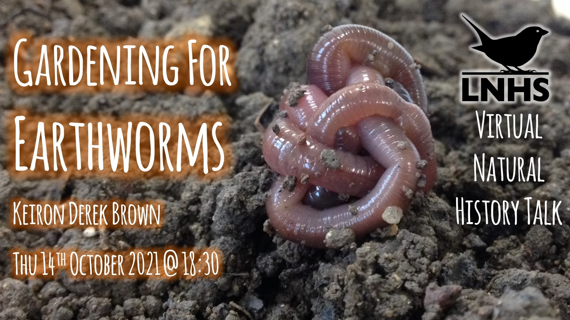 Gardening For Earthworms AD