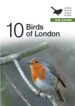10 Birds in London